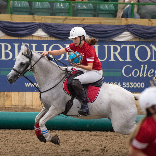 Spectators Encouraged to 'Shout and Scream' at Horseball