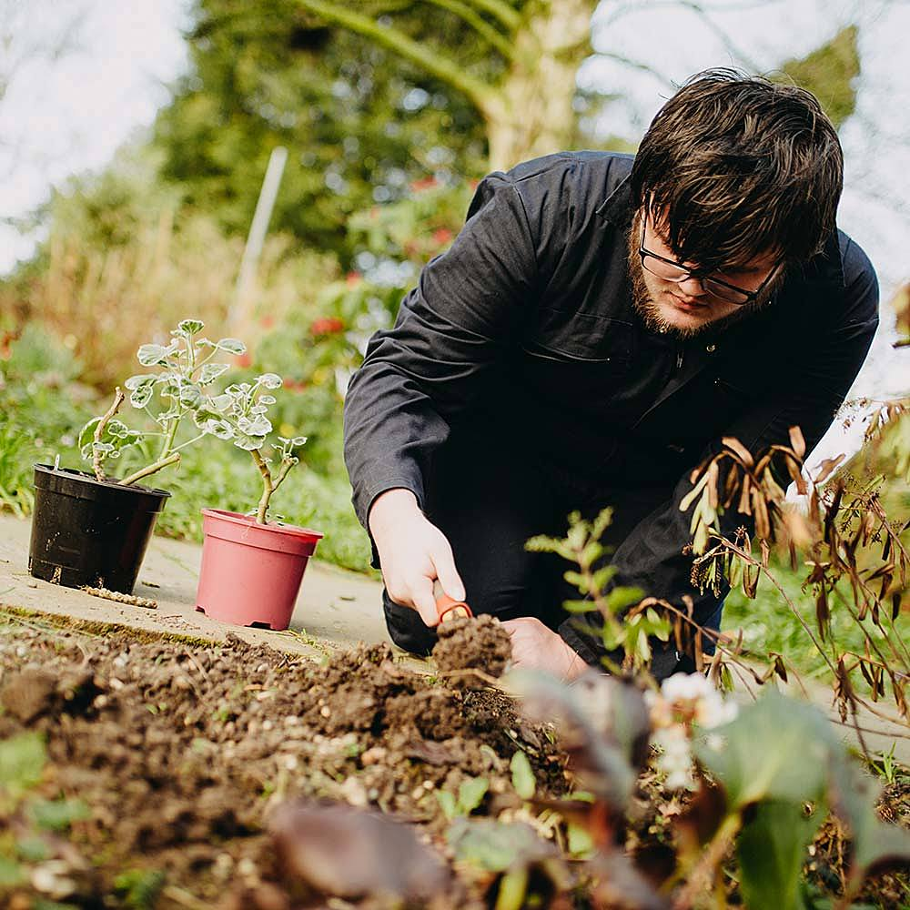 Horticulture apprentice working in gardens at Bishop Burton College during training
