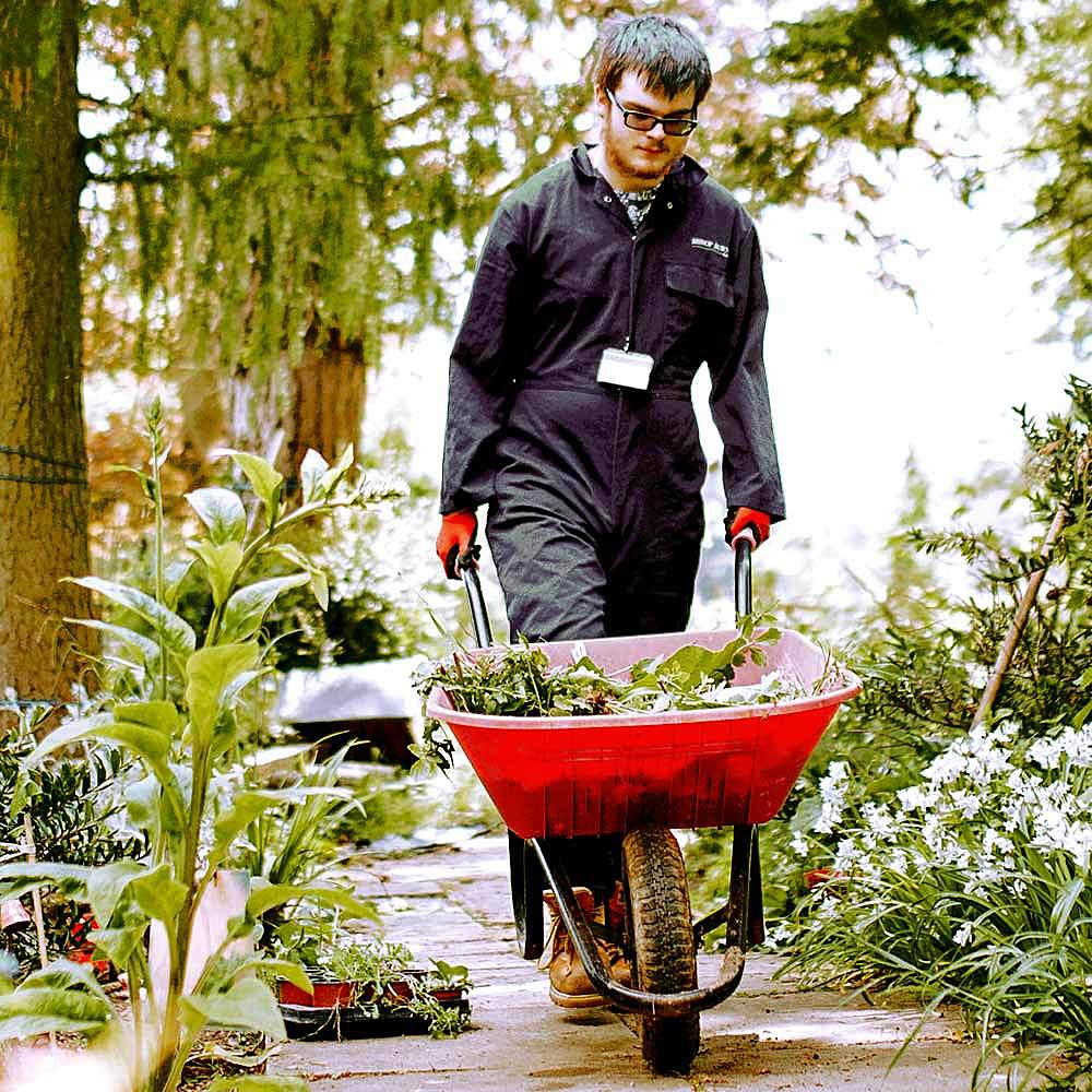 Student on Horticulture course pushes a wheelbarrow through the gardens at Bishop Burton College
