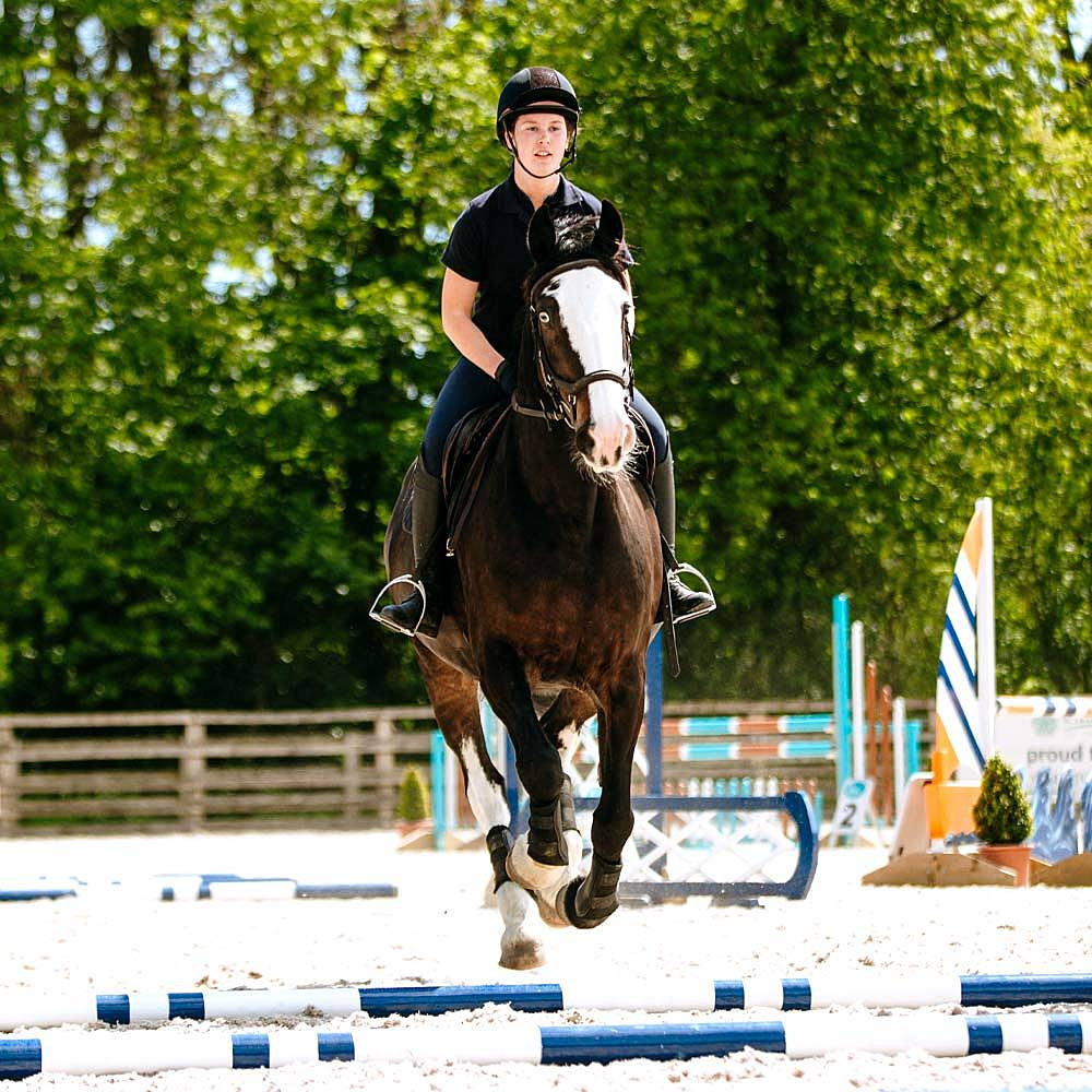Bishop-Burton-College-Equine-Courses-Horse-Polework