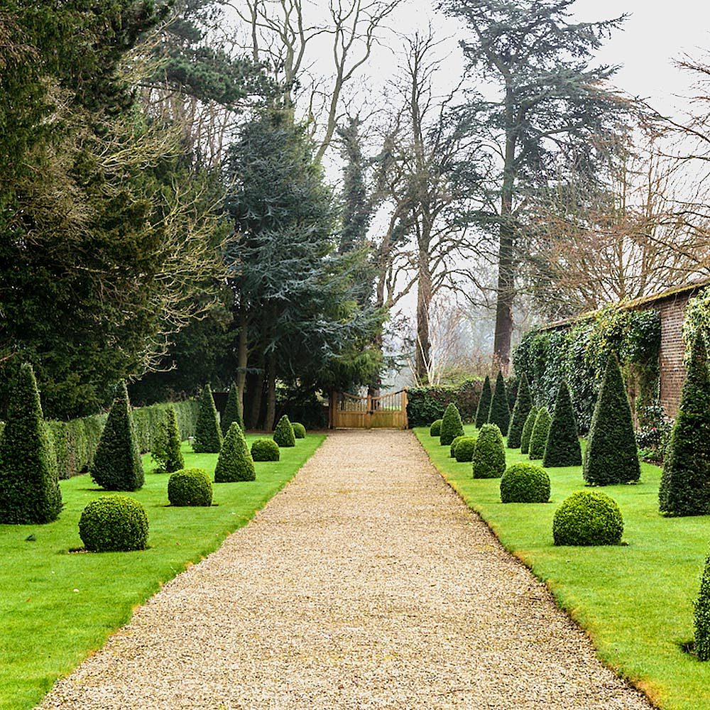 Path lined with trees and shrubs within Victorian walled garden at Bishop Burton College