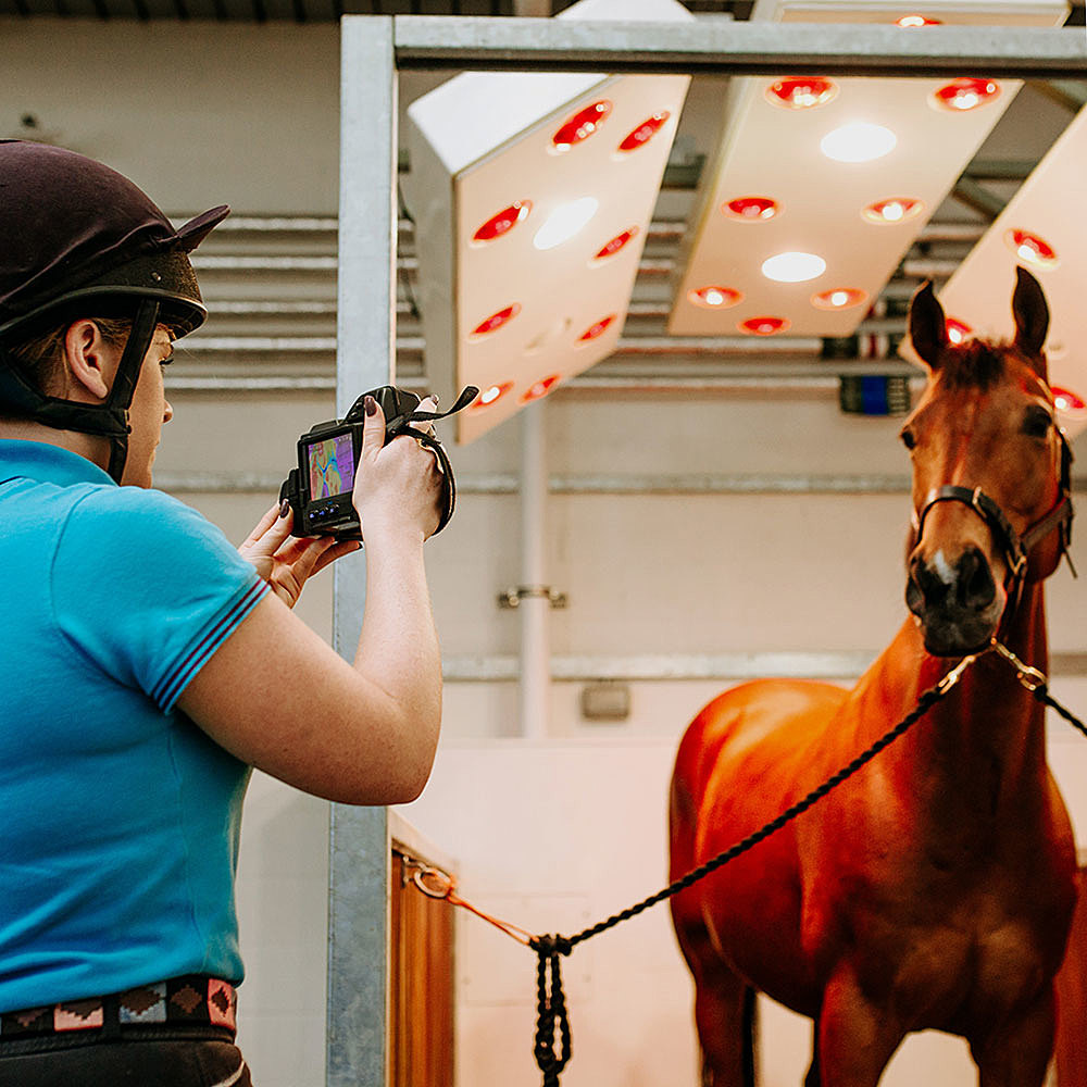 Bishop Burton College Facilities and Services Equine Centre Equine Facilities and Services Horse in Solarium and Student with Infrared Camera