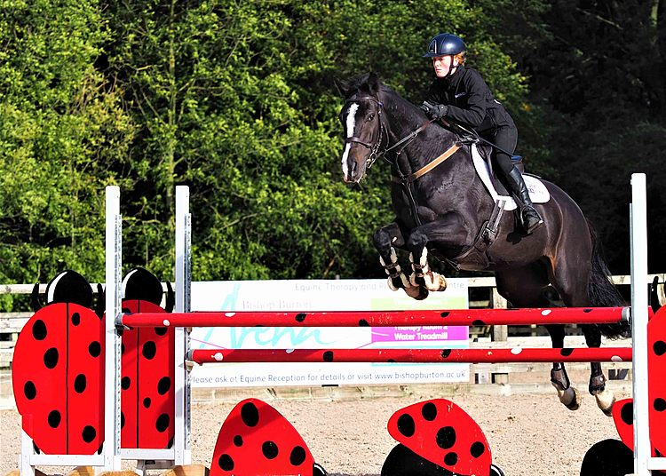 Black horse and equine academy rider jumping showjumping